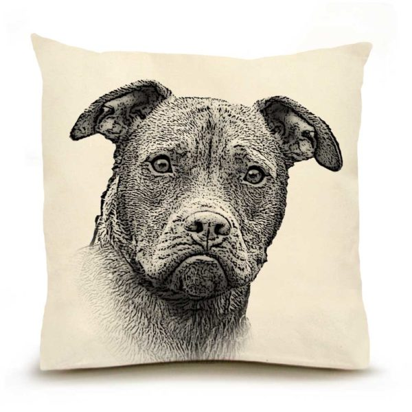 Pitbull Large PIllow