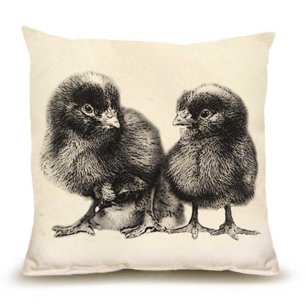 Chicks #1 Medium Pillow