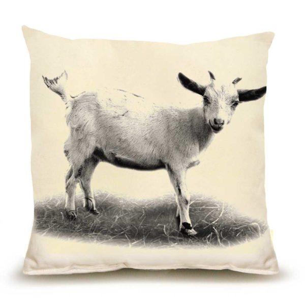 Baby Goat #1 Medium Pillow