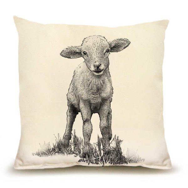 Lamb Medium Pillow
