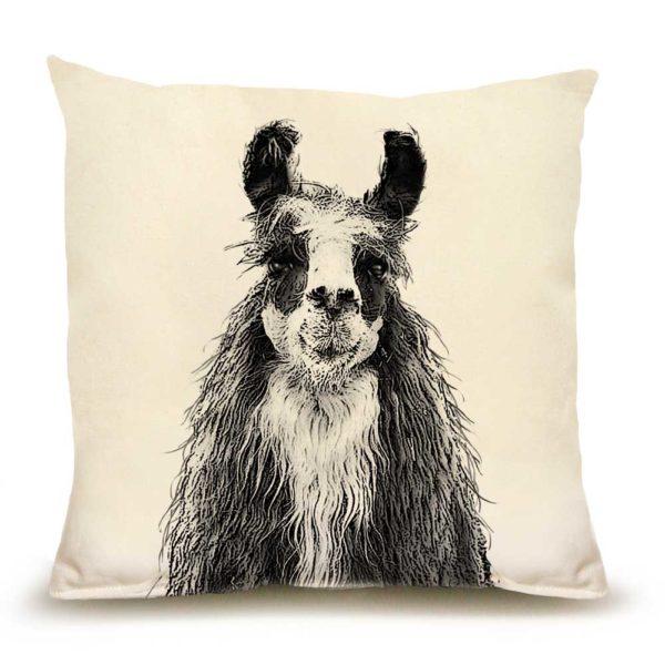 Llama #1 Medium Pillow