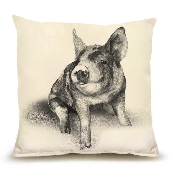 Pig #2 Medium Pillow