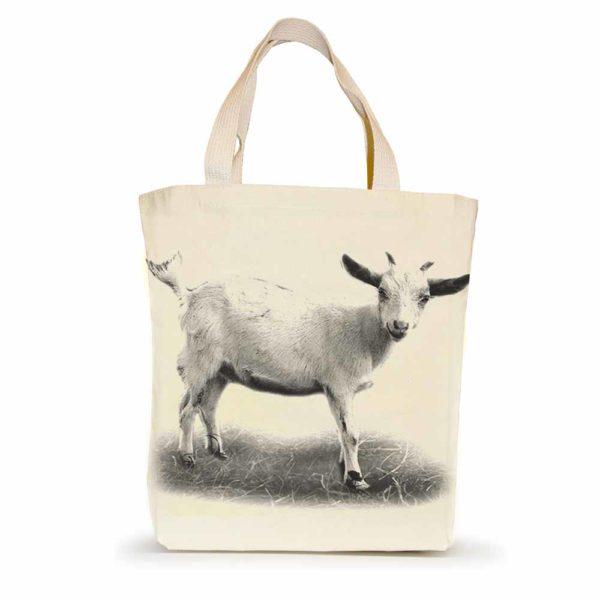 EandC_ST_Goat 1_Product Shot_1000x1000_Product shot-web