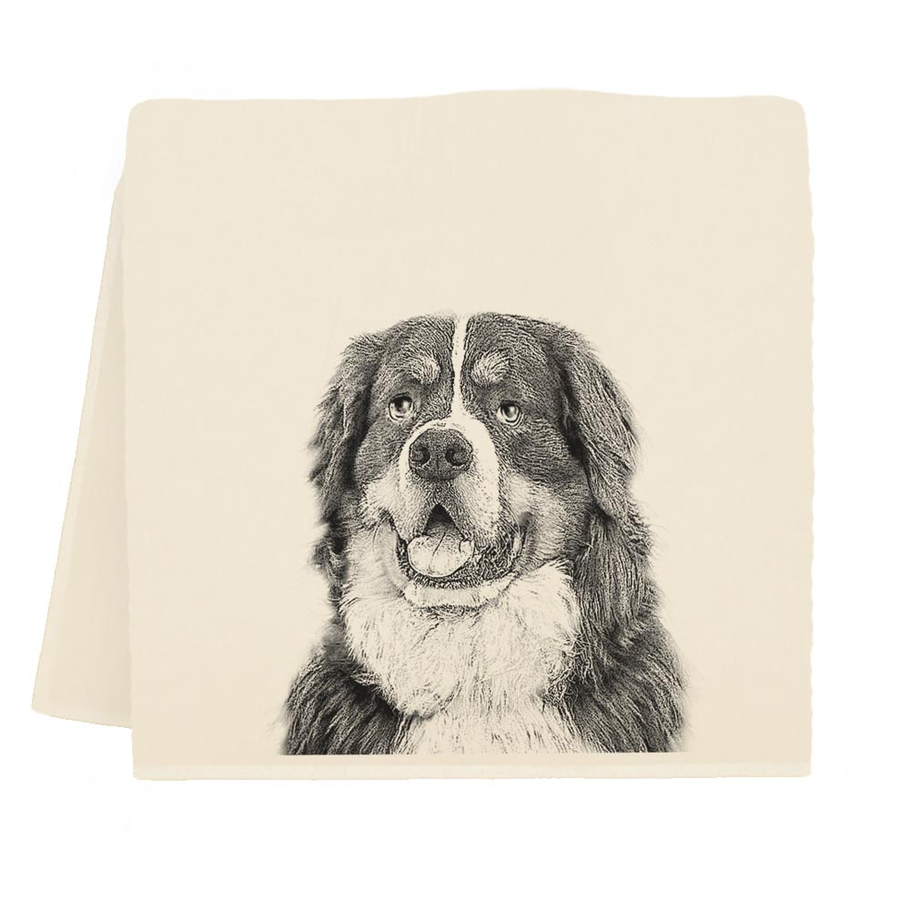 Bernese Mountain Dog TT