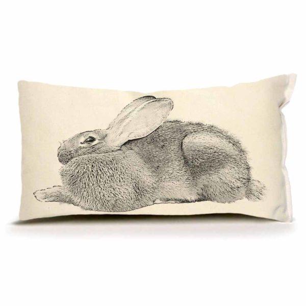 EandC_SP_Bunny-5_PRODUCT-SHOT_1000x1000_Product-shot-web-2-e1579642567690.jpg