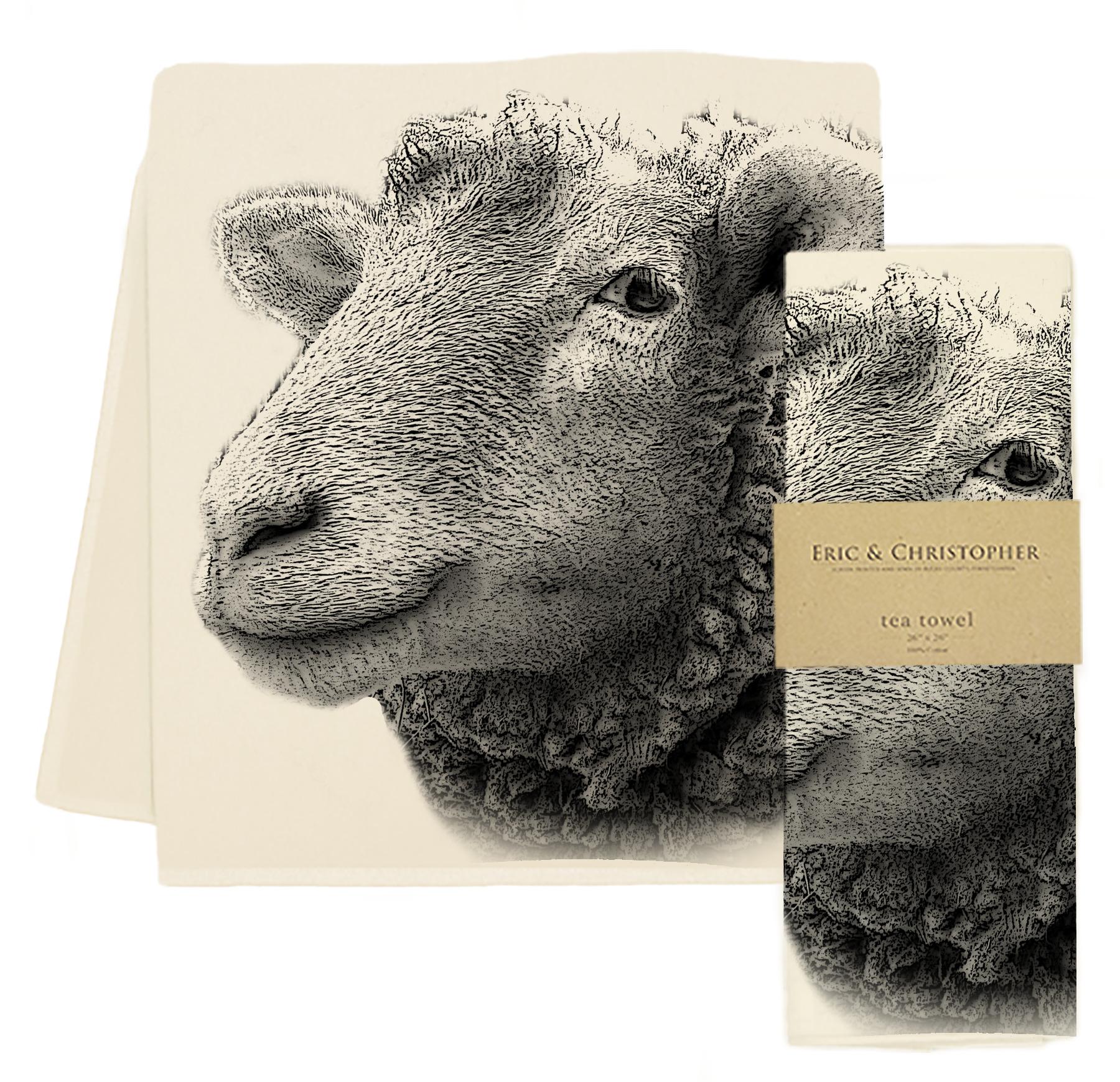 EandC_TT_Sheep_CK