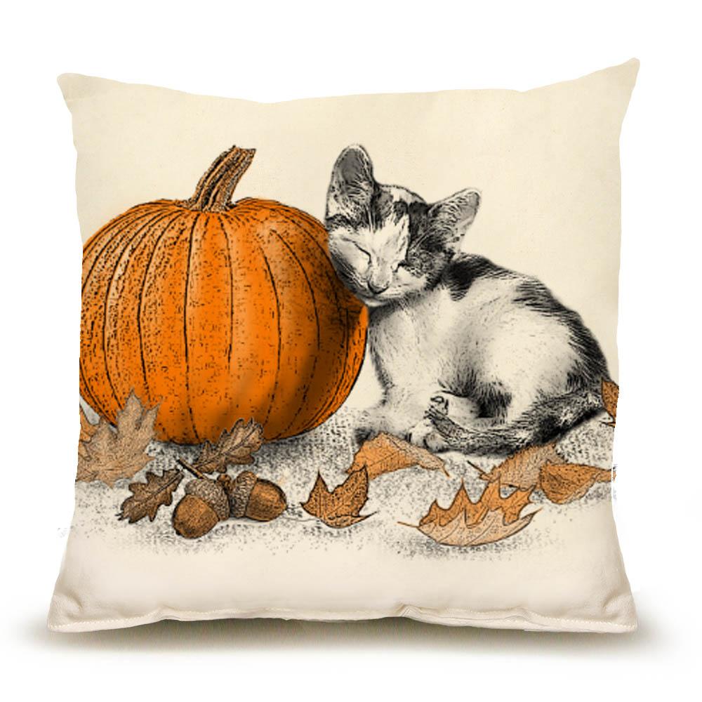 Pet Contest Cat_MP_Kiki with Pumpkin_PRODUCTSHOT_CK[6094]
