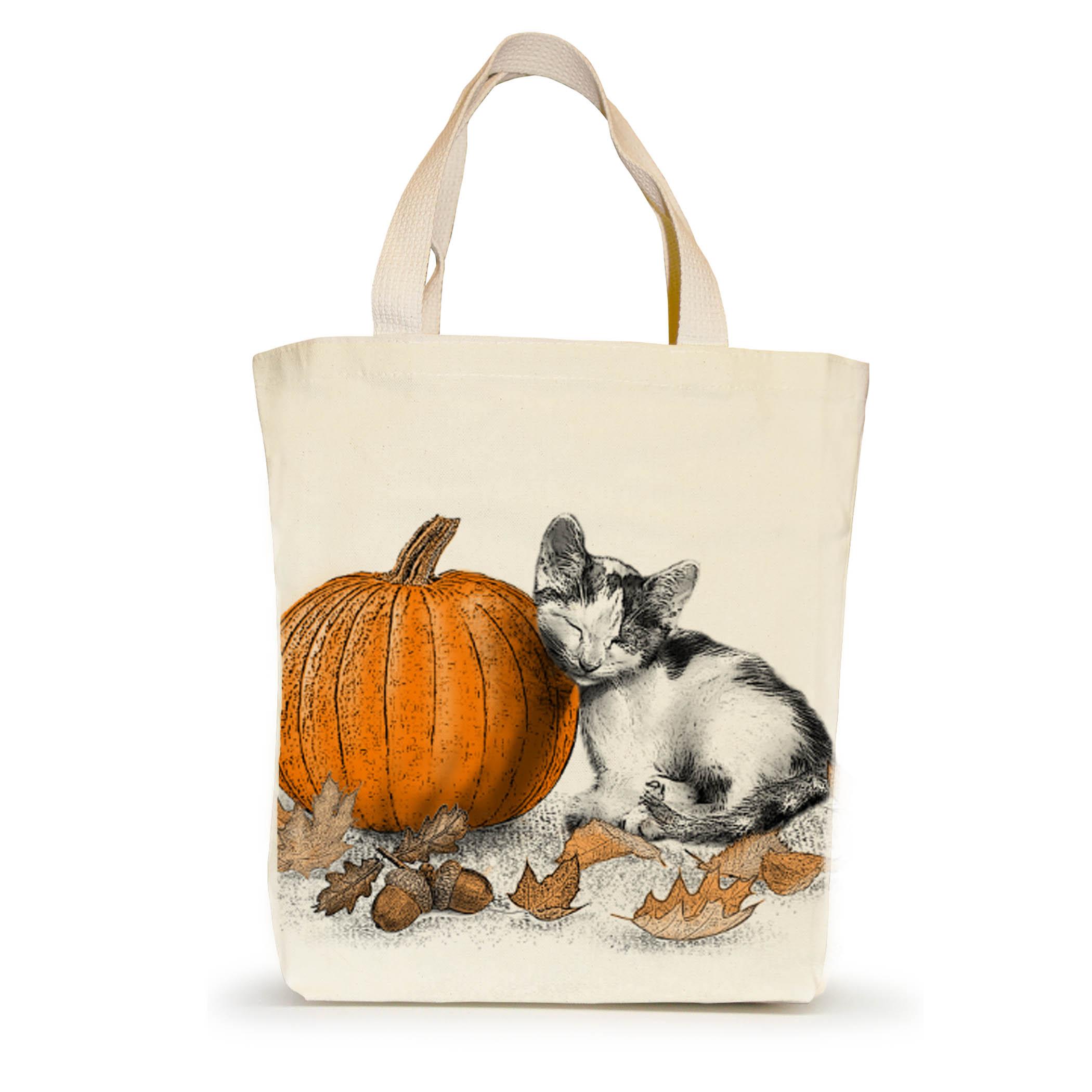 Pet Contest Cat_ST_Kiki with Pumpkin_PRODUCTSHOT_CK[6093]